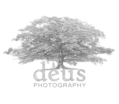 Photographers - Benjamin Carlyle Celebrant Wedding Friends - Deus Photography