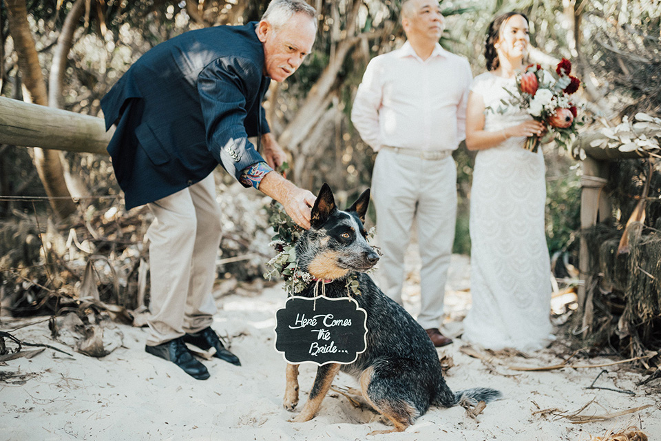 Fingal Beach Dog Friendly Wedding  - Hitched iN Paradise Elopement