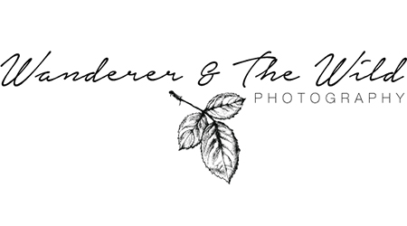 Photographers - Benjamin Carlyle Celebrant Wedding Friends - Wanderer & Wild